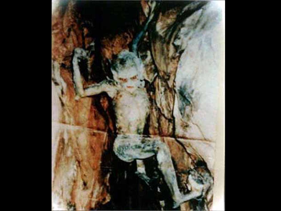 De volgende foto was een bewijs in een politieonderzoek naar een vreemd ongeluk. Deze foto werd gemaakt door iemand die in sommige grotten (Khaiman) f