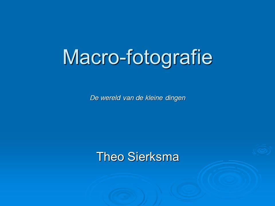 Macro-fotografie De wereld van de kleine dingen Theo Sierksma
