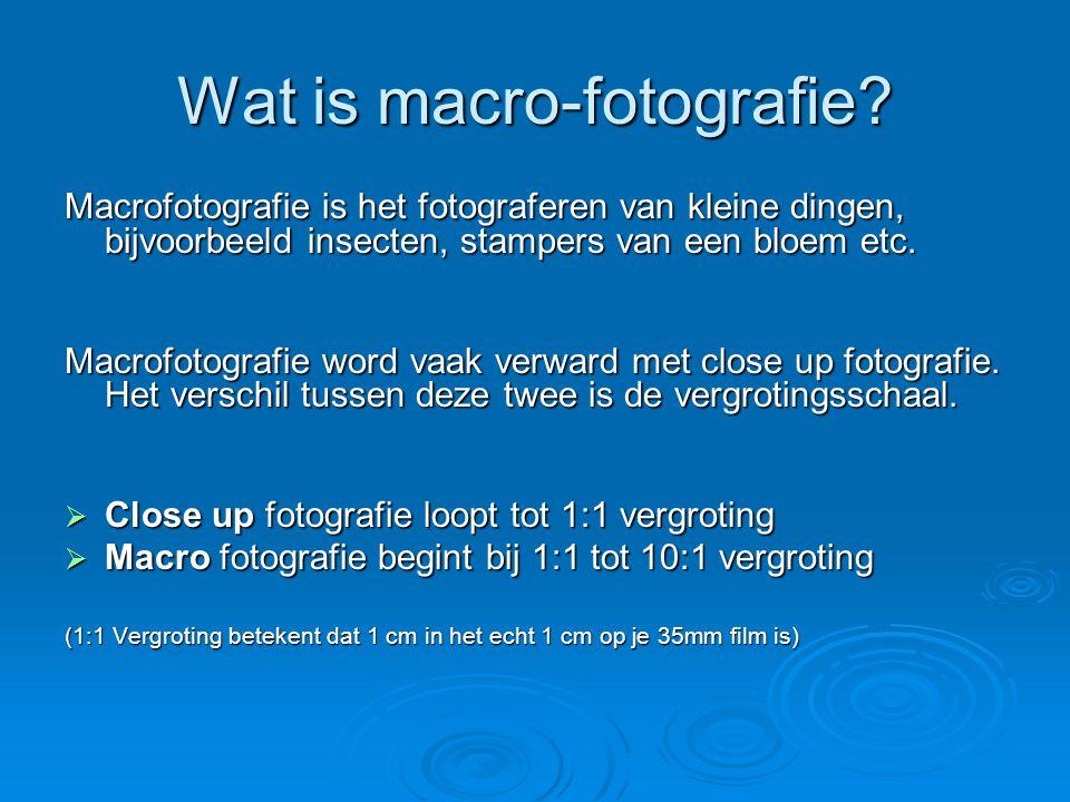 Wat is macro-fotografie.