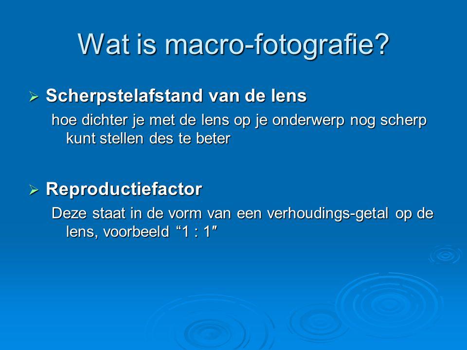 Hoe maak je macro-foto's.