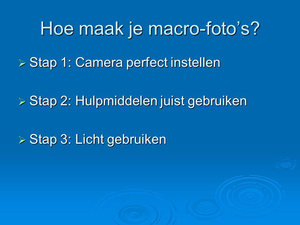 Stap 1: Camera perfect instellen  Handmatig in plaats van autofocus  Belichting handmatig instellen  Scherptediepte beïnvloeden  Scherpte controleren
