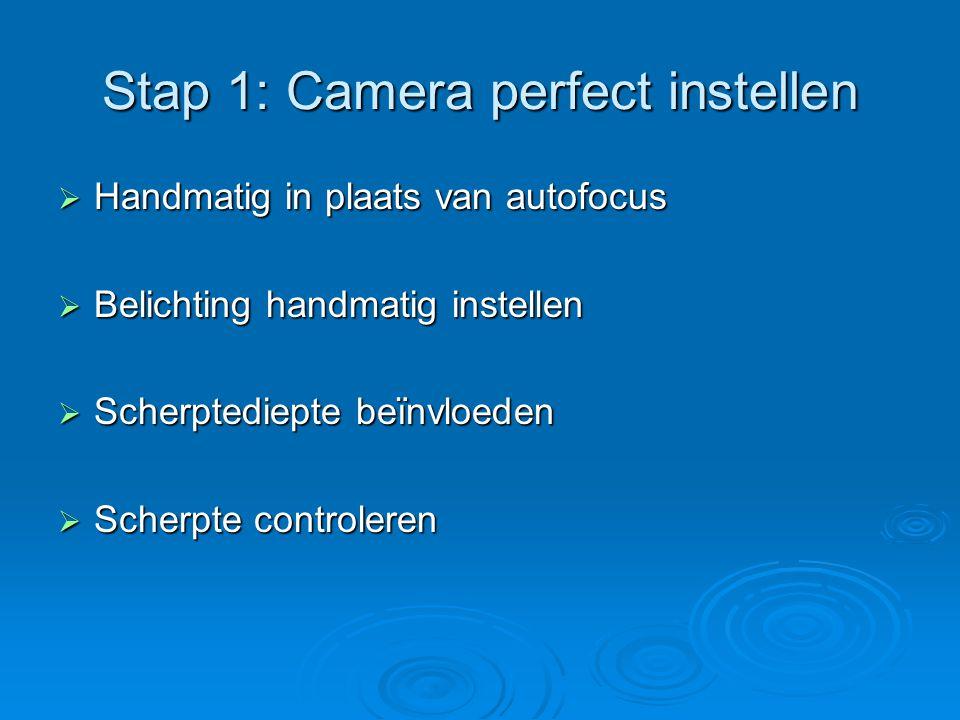Stap 2: Hulpmiddelen juist gebruiken  Het licht op de juiste manier meten  Het macro-objectief  Close-uplenzen en tussenringen  Statief  Afstandsbediening of zelfontspanner  Filters (polarisatiefilter)  Alternatieven (voorzetlens + zoomlens)