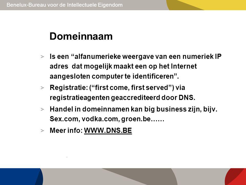 """Benelux-Bureau voor de Intellectuele Eigendom Domeinnaam > Is een """"alfanumerieke weergave van een numeriek IP adres dat mogelijk maakt een op het Inte"""