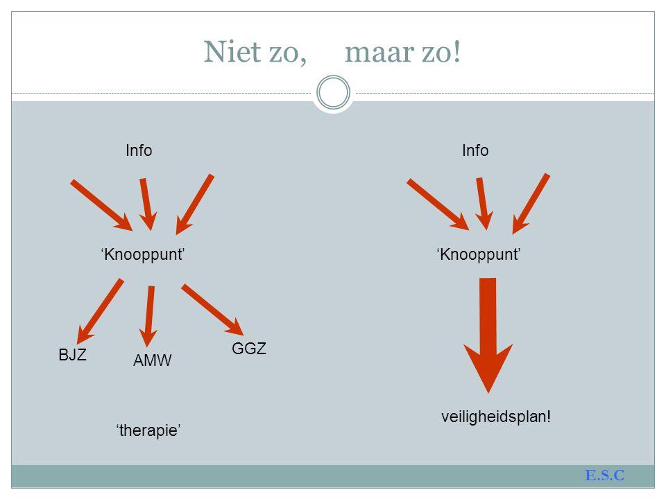 Signsofsafety.nl Signsofsafety.net Signsofsafetyzeeland.nl www.leuven.signsofsafetyzeeland.nl E.S.C