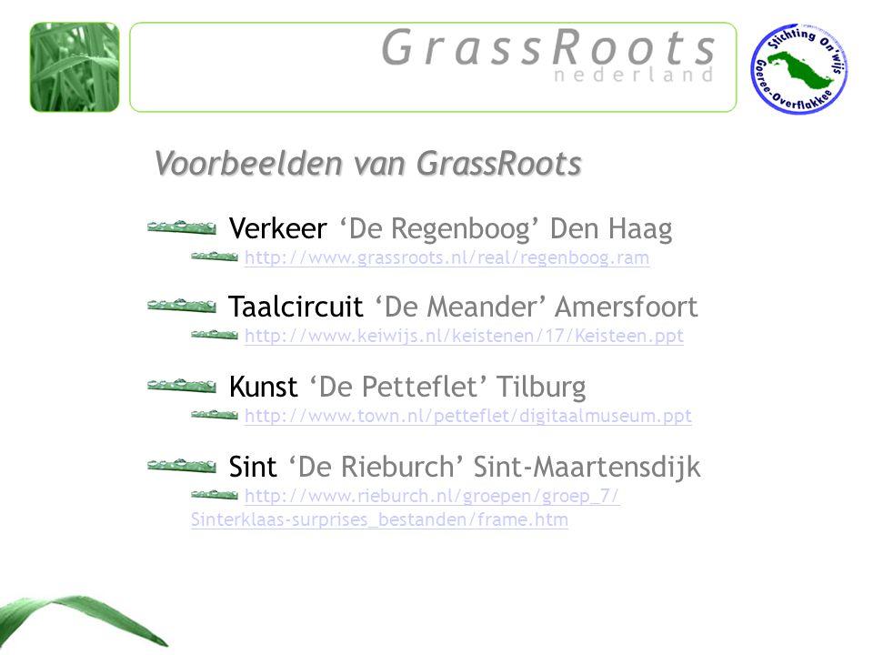 ICT-gebruik Leerkracht + leerlingen Meerwaarde voor het onderwijs Projectomschrijving Evaluatie Publicatie op internet Eigenschappen GrassRoot