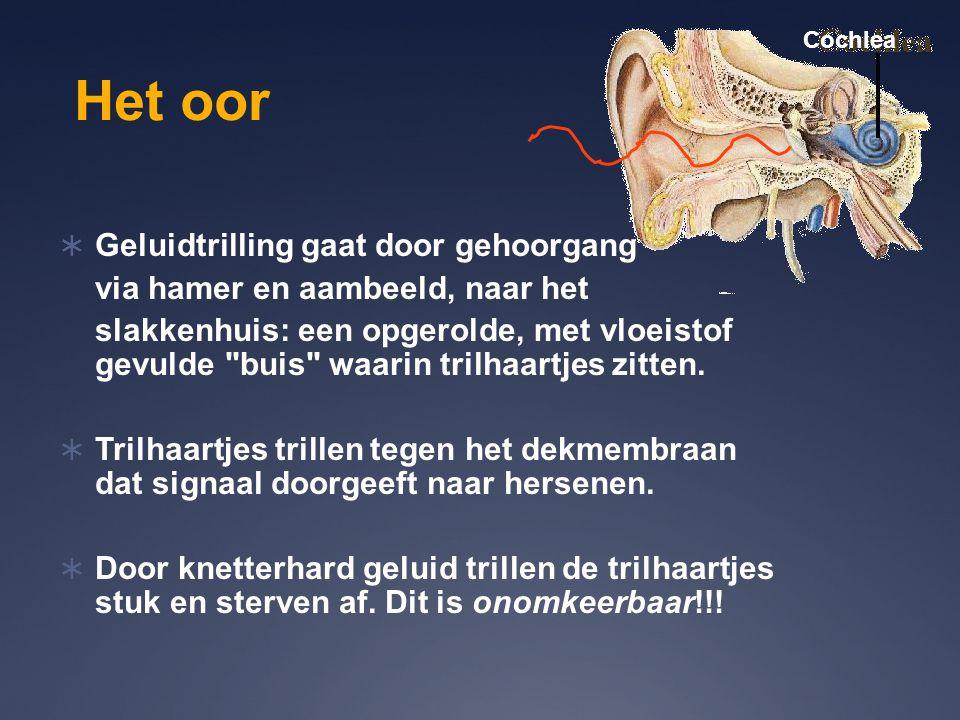 Het oor  Geluidtrilling gaat door gehoorgang via hamer en aambeeld, naar het slakkenhuis: een opgerolde, met vloeistof gevulde