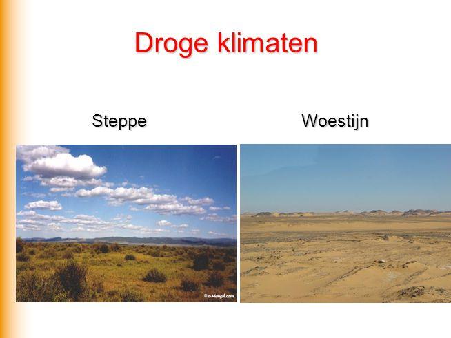 Droge klimaten Steppe Woestijn Steppe Woestijn