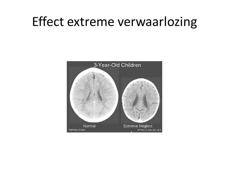 Effect extreme verwaarlozing