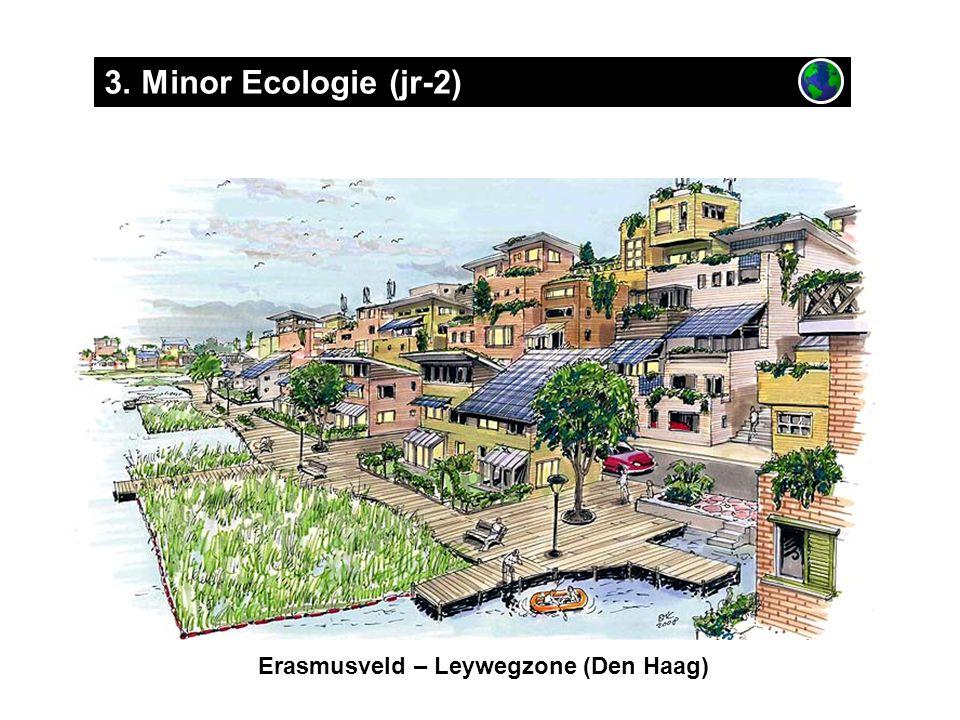 Erasmusveld – Leywegzone (Den Haag) 3. Minor Ecologie (jr-2)