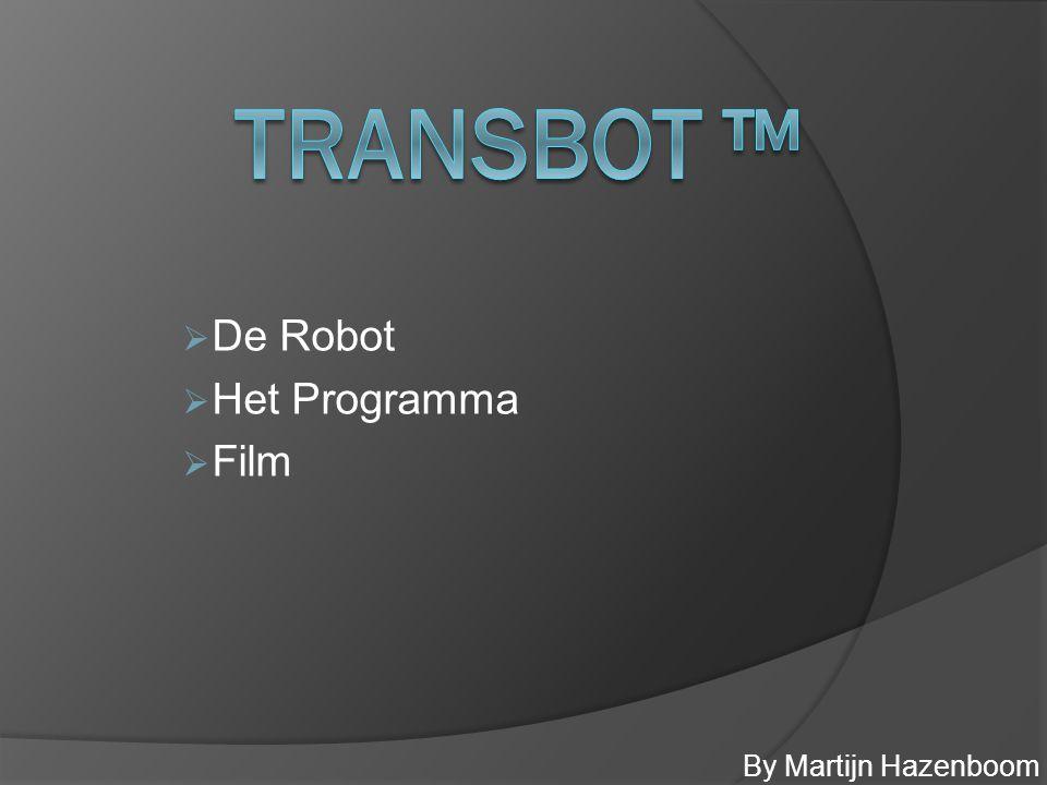 De Robot  Model / Functie  Verholpen problemen