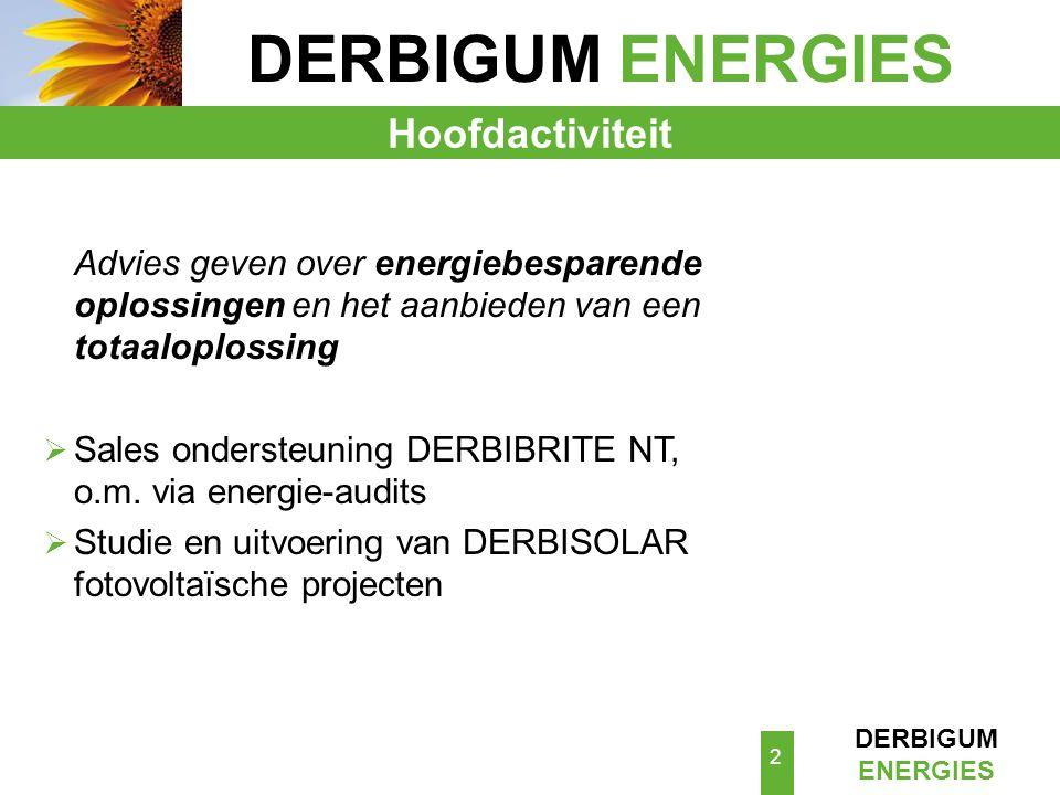 DERBIGUM ENERGIES 13 Wij kennen het positieve effect van het reflecterende oppervlak van de DERBIBRITE NT .