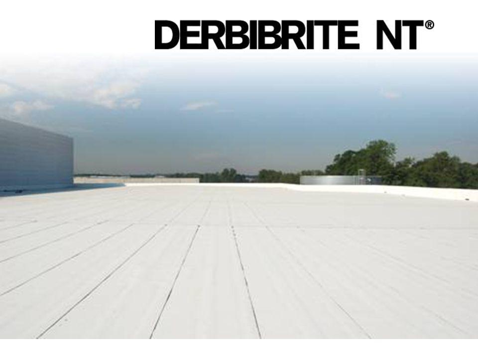 4 Afstand (km) Δ Luchttemperatuur (°C) Centrum Buitenwijk Platteland Broeikaseffect tegengaan DERBIBRITE NT