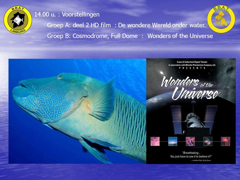 14.00 u. : Voorstellingen Groep A: deel 2 HD film : De wondere Wereld onder water.