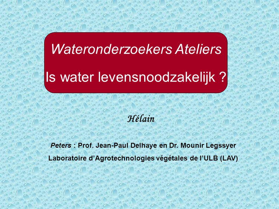 Wateronderzoekers Ateliers Is water levensnoodzakelijk .
