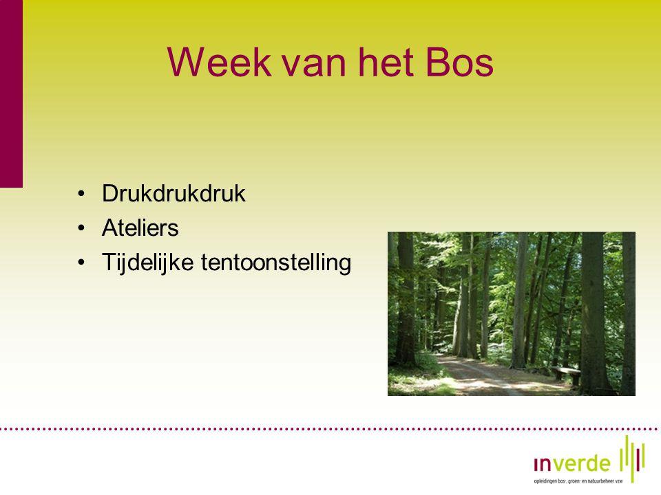Week van het Bos •Drukdrukdruk •Ateliers •Tijdelijke tentoonstelling