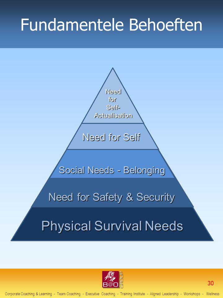Physical Survival Needs Need for Safety & Security Social Needs - Belonging Need for Self NeedforSelf-Actualisation Fundamentele Behoeften Corporate C