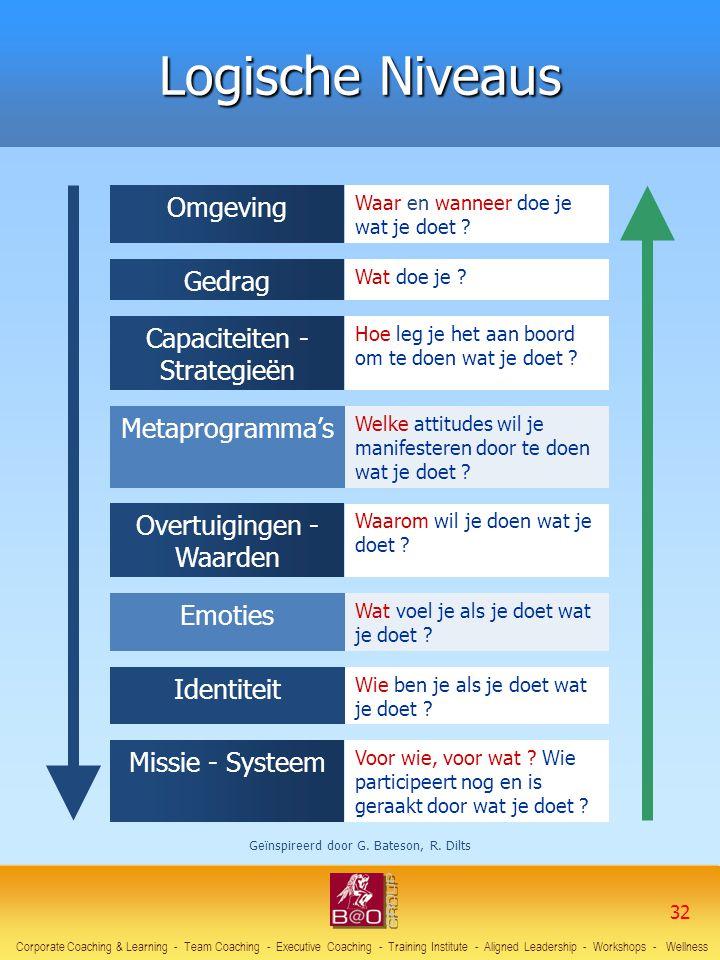 Omgeving Waar en wanneer doe je wat je doet ? Gedrag Wat doe je ? Capaciteiten - Strategieën Hoe leg je het aan boord om te doen wat je doet ? Metapro