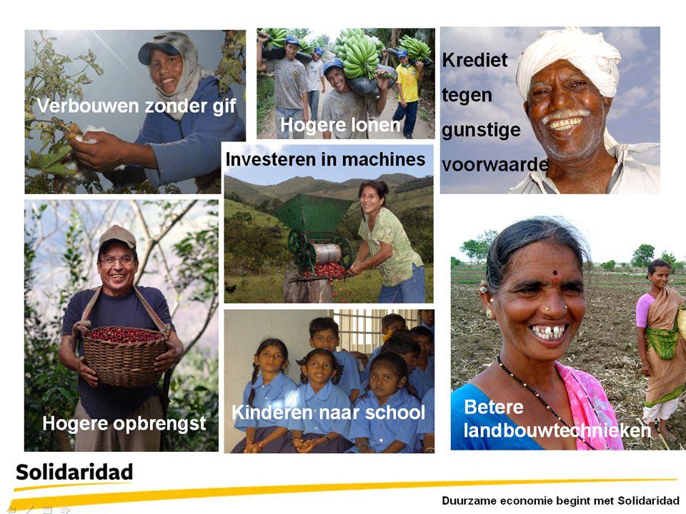 Duurzam economie begint met Solidaridad Verbouwen zonder gif Hogere opbrengst Betere landbouwtechnieken Kinderen naar school