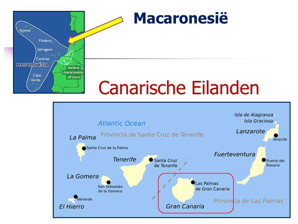 Macaronesië Canarische Eilanden