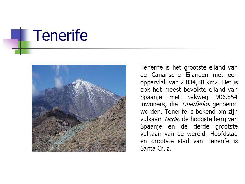 Tenerife Tenerife is het grootste eiland van de Canarische Eilanden met een oppervlak van 2.034,38 km2.
