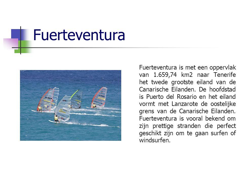 Fuerteventura Fuerteventura is met een oppervlak van 1.659,74 km2 naar Tenerife het twede grootste eiland van de Canarische Eilanden.