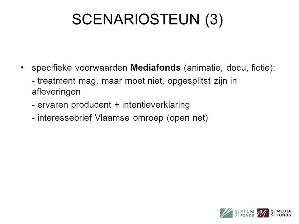 SCENARIOSTEUN (3) •specifieke voorwaarden Mediafonds (animatie, docu, fictie): - treatment mag, maar moet niet, opgesplitst zijn in afleveringen - erv