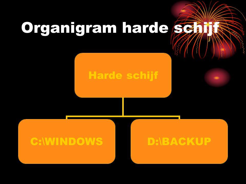 Organigram C:\WINDOWS C:WINDOWS Windows Program Files Mijn Documenten
