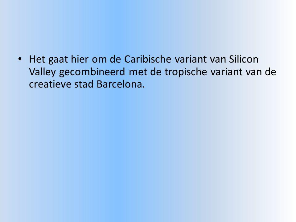 • Het gaat hier om de Caribische variant van Silicon Valley gecombineerd met de tropische variant van de creatieve stad Barcelona.