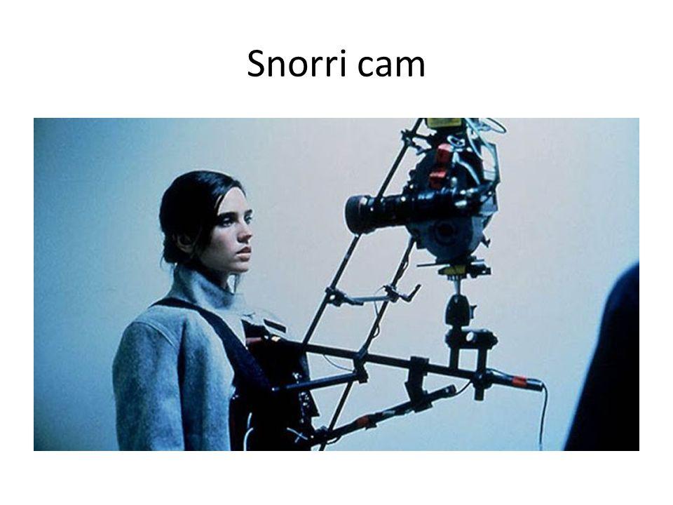 Snorri cam