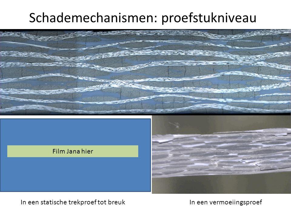 Schademechanismen: structuurniveau