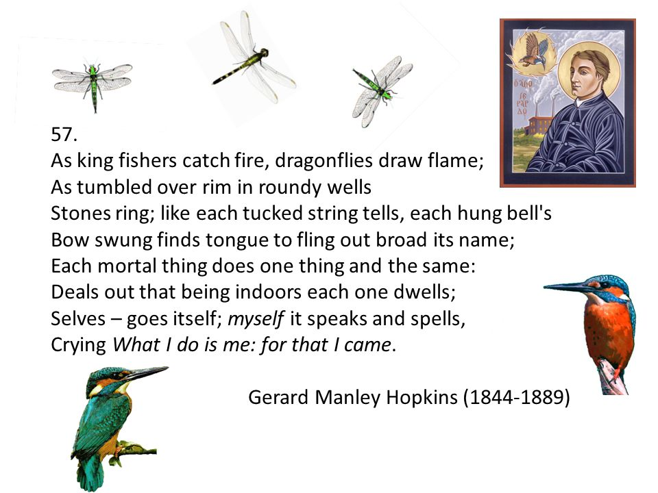 57. As king fishers catch fire, dragonflies draw flame; As tumbled over rim in roundy wells Stones ring; like each tucked string tells, each hung bell