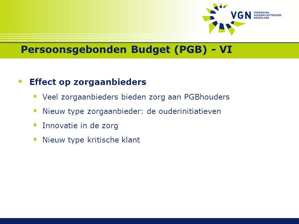 Persoonsgebonden Budget (PGB) - VI  Effect op zorgaanbieders  Veel zorgaanbieders bieden zorg aan PGBhouders  Nieuw type zorgaanbieder: de ouderini