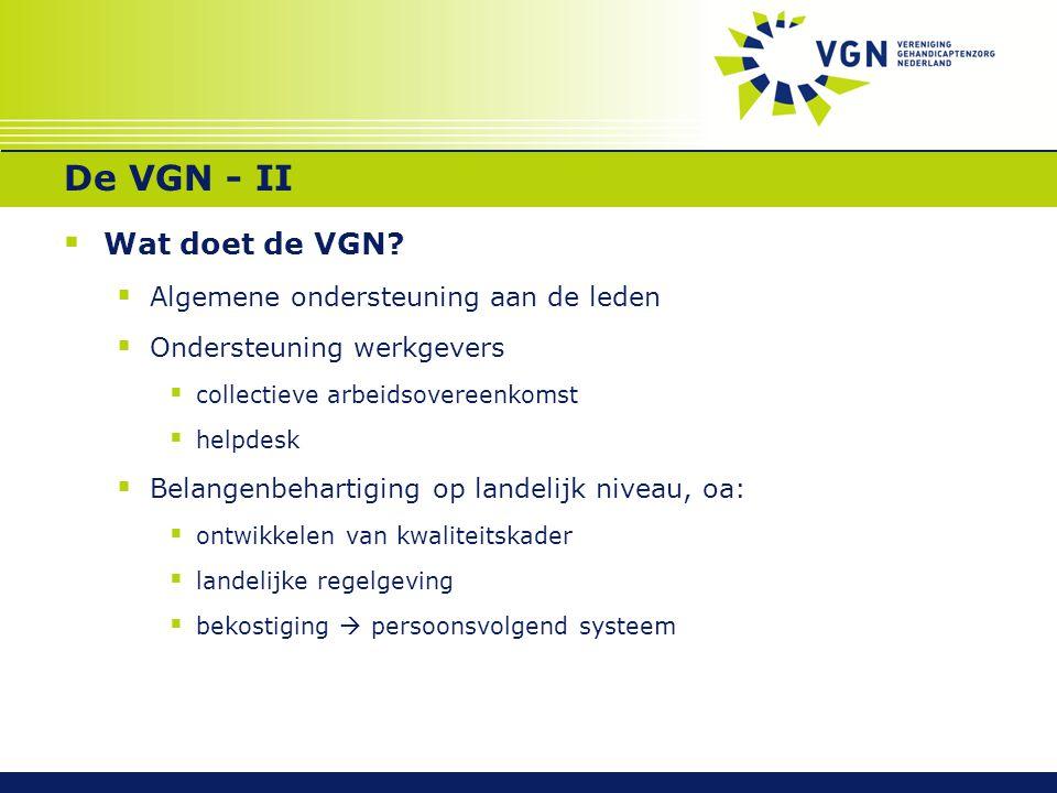 De VGN - II  Wat doet de VGN?  Algemene ondersteuning aan de leden  Ondersteuning werkgevers  collectieve arbeidsovereenkomst  helpdesk  Belange