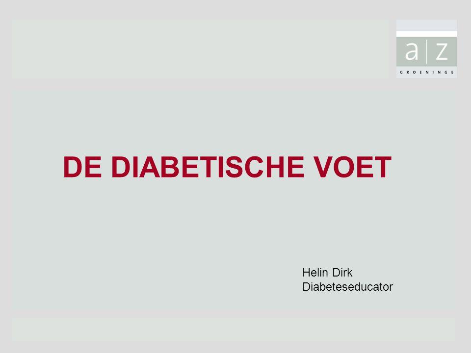 DE DIABETISCHE VOET Helin Dirk Diabeteseducator