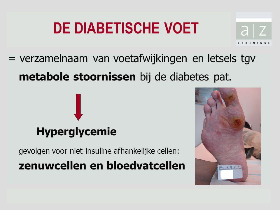 DE DIABETISCHE VOET = verzamelnaam van voetafwijkingen en letsels tgv metabole stoornissen bij de diabetes pat. Hyperglycemie gevolgen voor niet-insul