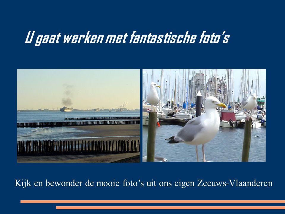 U gaat werken met fantastische foto's Kijk en bewonder de mooie foto's uit ons eigen Zeeuws-Vlaanderen