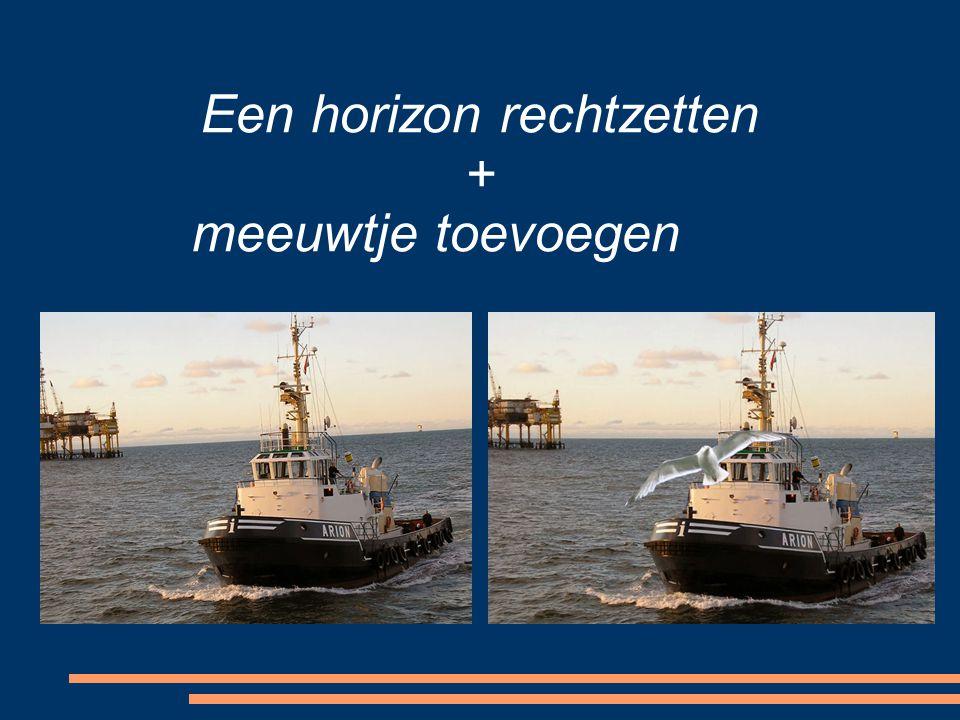 Een horizon rechtzetten + meeuwtje toevoegen
