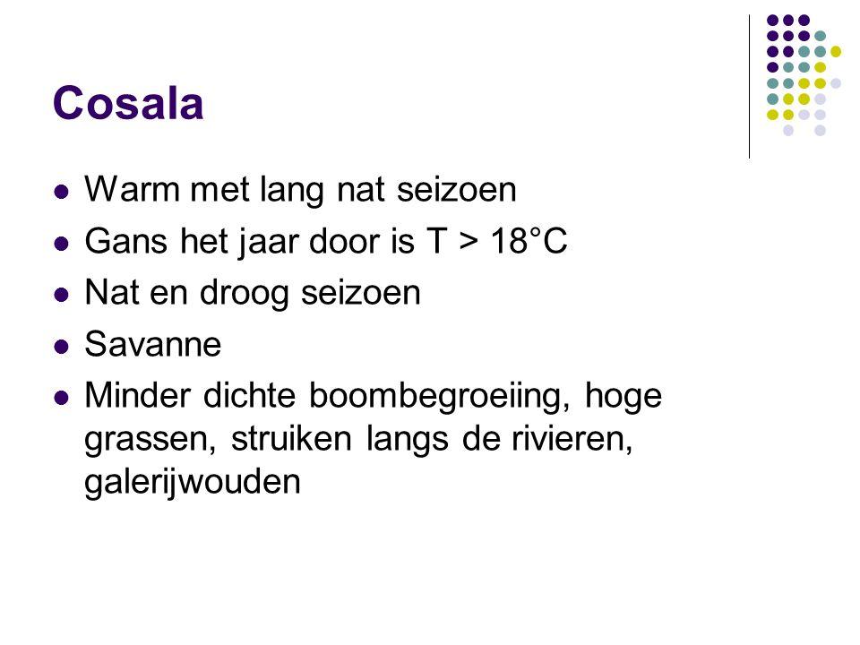 Cosala  Warm met lang nat seizoen  Gans het jaar door is T > 18°C  Nat en droog seizoen  Savanne  Minder dichte boombegroeiing, hoge grassen, str