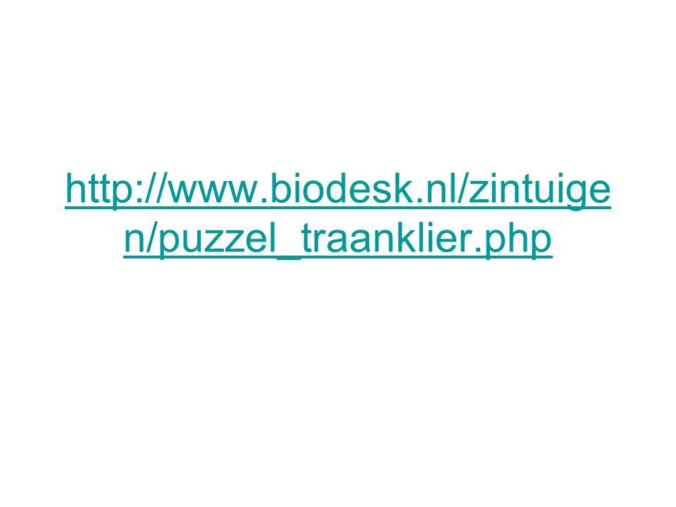 http://www.biodesk.nl/zintuige n/puzzel-oog.php