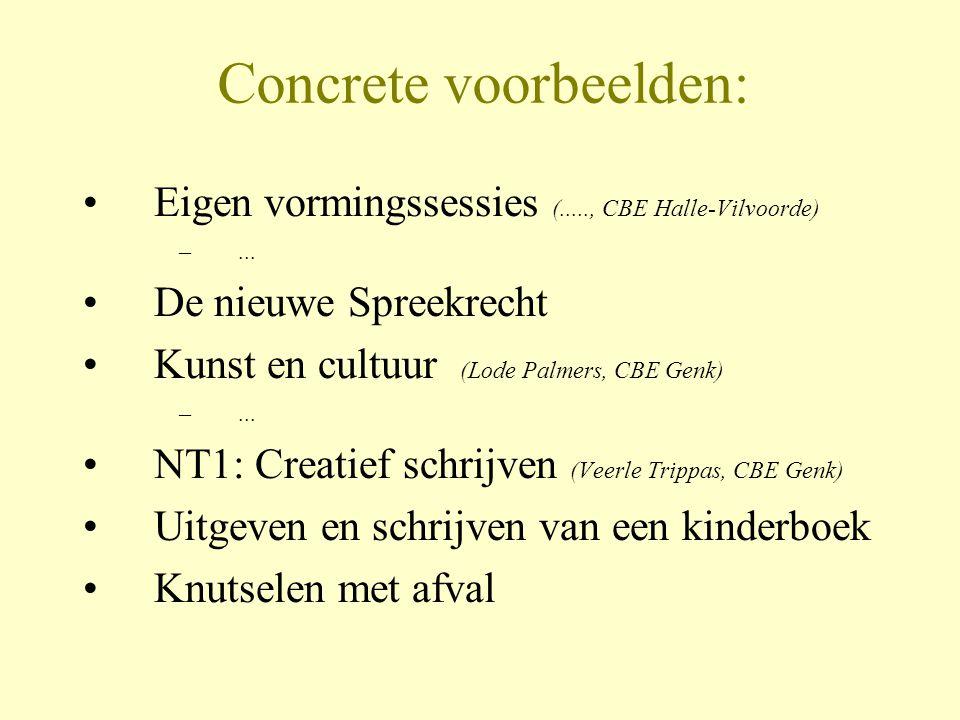 Concrete voorbeelden: •Eigen vormingssessies (....., CBE Halle-Vilvoorde) –... •De nieuwe Spreekrecht •Kunst en cultuur (Lode Palmers, CBE Genk) –...