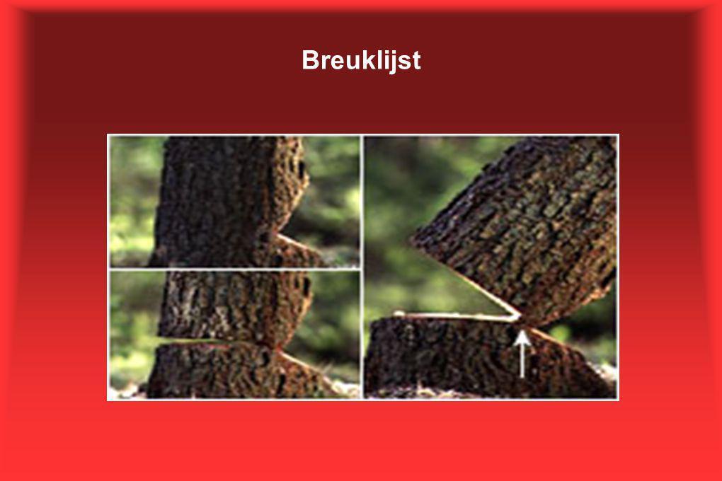 Breuklijst
