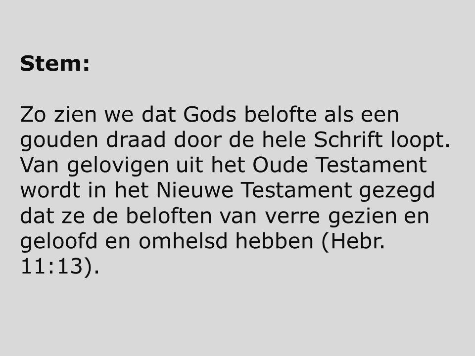 Stem: Zo zien we dat Gods belofte als een gouden draad door de hele Schrift loopt. Van gelovigen uit het Oude Testament wordt in het Nieuwe Testament