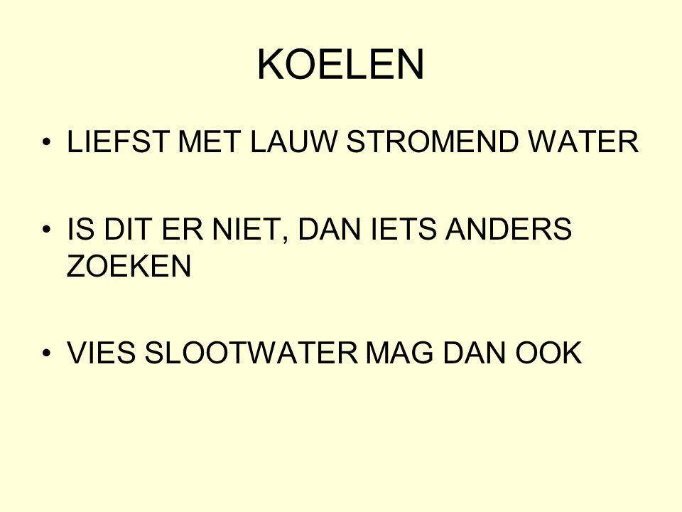 KOELEN •LIEFST MET LAUW STROMEND WATER •IS DIT ER NIET, DAN IETS ANDERS ZOEKEN •VIES SLOOTWATER MAG DAN OOK