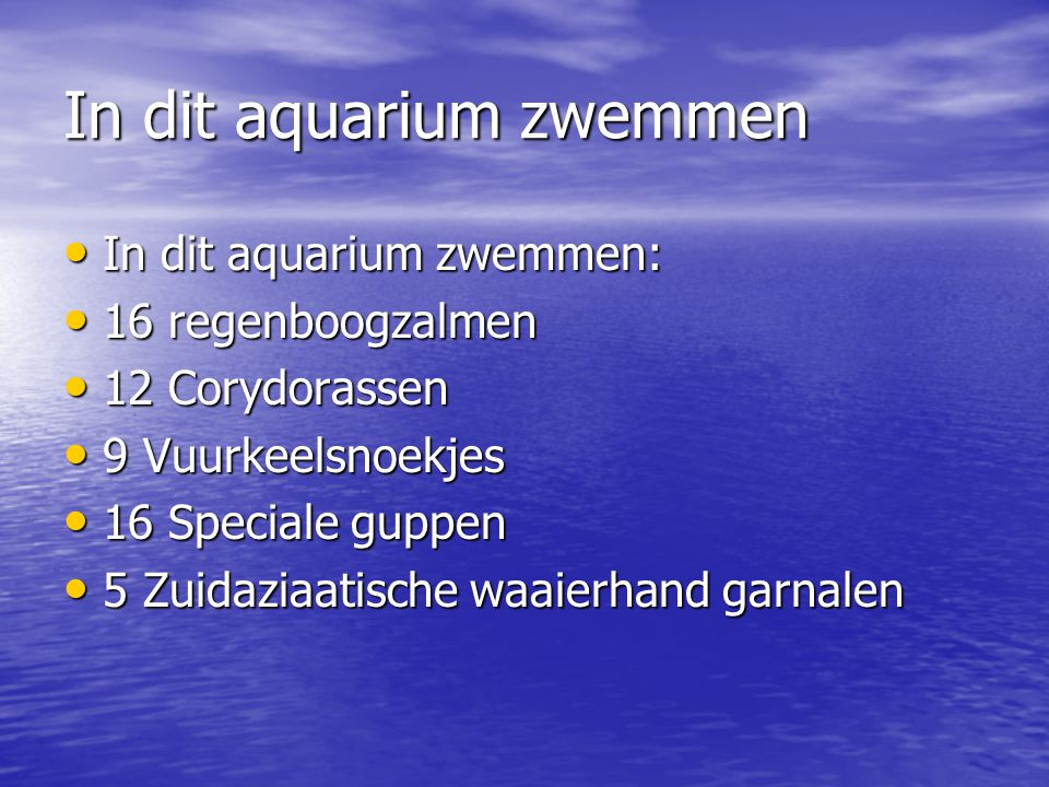 In dit aquarium zwemmen • In dit aquarium zwemmen: • 16 regenboogzalmen • 12 Corydorassen • 9 Vuurkeelsnoekjes • 16 Speciale guppen • 5 Zuidaziaatisch