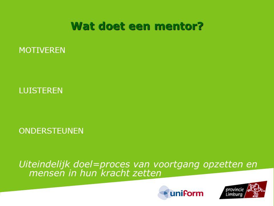Wat doet een mentor.