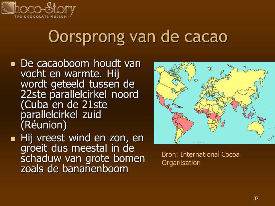 37 Oorsprong van de cacao  De cacaoboom houdt van vocht en warmte. Hij wordt geteeld tussen de 22ste parallelcirkel noord (Cuba en de 21ste parallelc