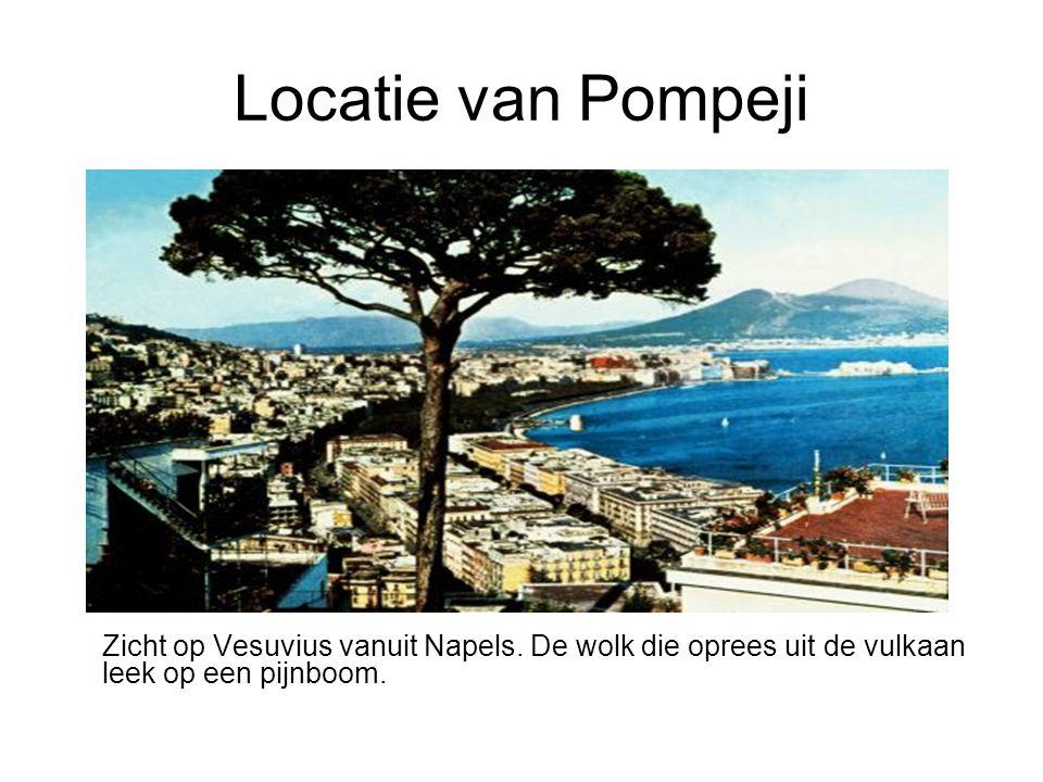 Zicht op Vesuvius vanuit Napels. De wolk die oprees uit de vulkaan leek op een pijnboom.