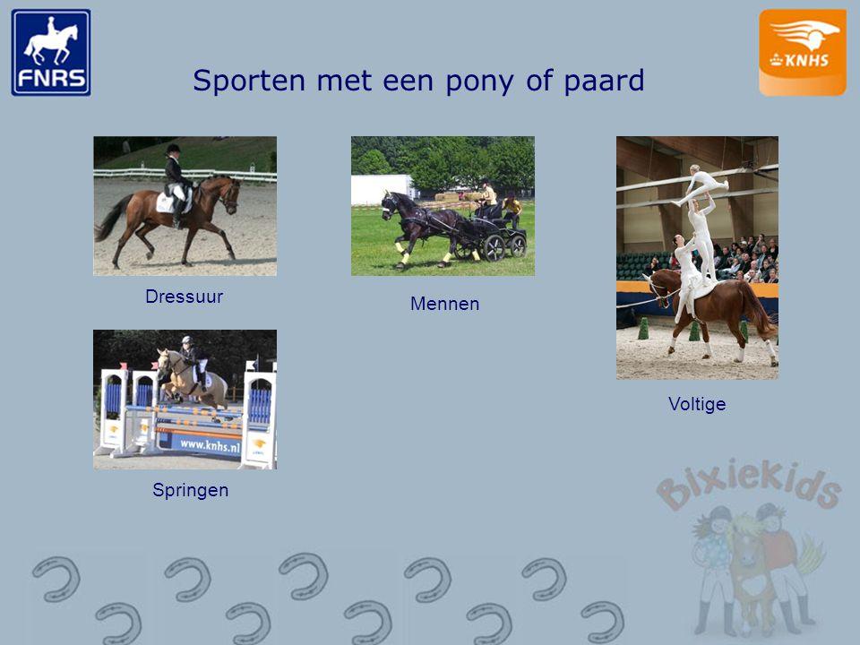 Sporten met een pony of paard Dressuur Mennen Voltige Springen