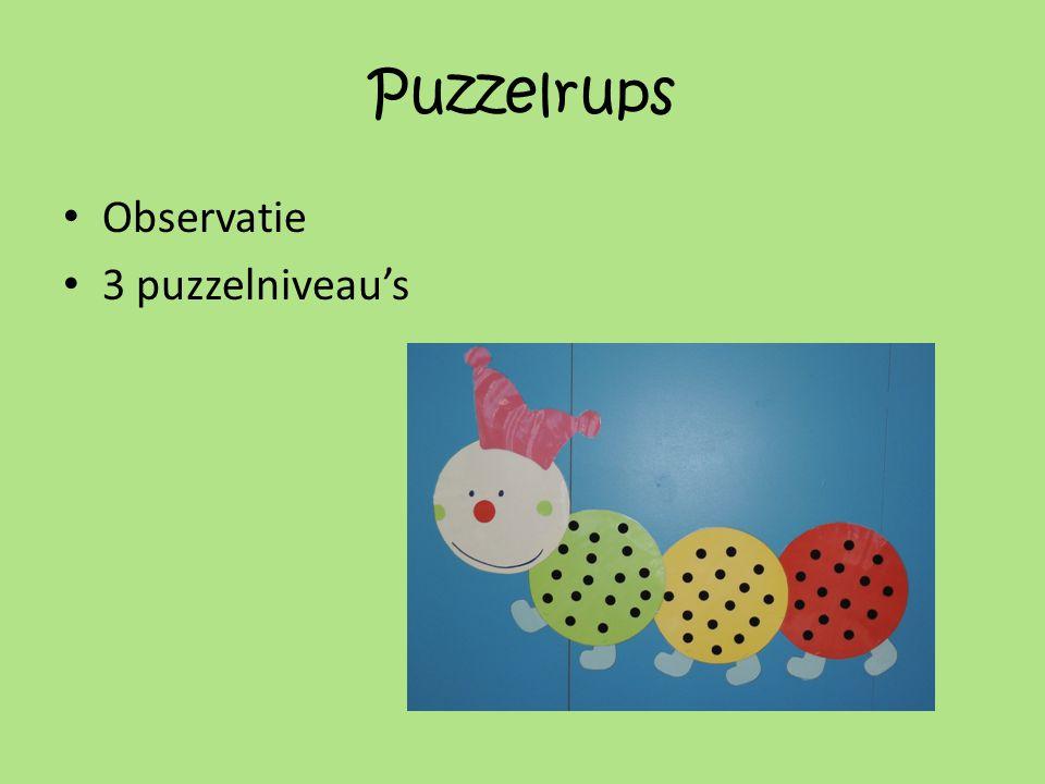 Puzzelrups • Observatie • 3 puzzelniveau's