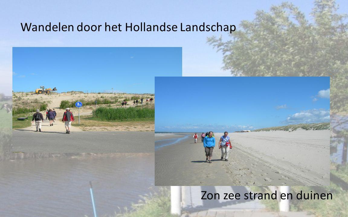 Wandelen door het Hollandse Landschap Zon zee strand en duinen